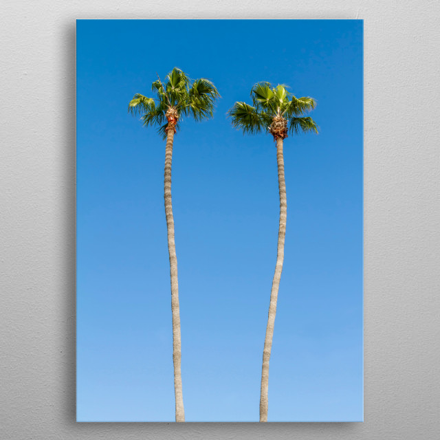 Idyllic view of palm trees in a minimalist style. metal poster