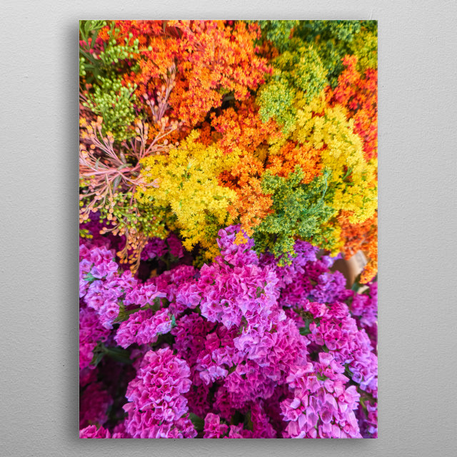 colorful floral composition for decoration metal poster