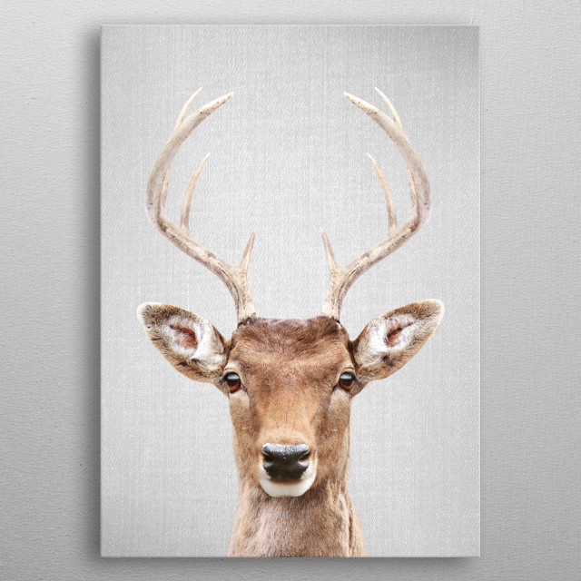 "Deer 2 - Colorful.  For more colorful animals check out the collection in the main page of my shop ""Gal Design"". metal poster"