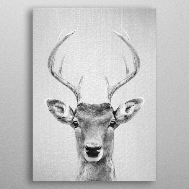 "Deer 2 - Black & White.  For more black & white animals check out the collection in the main page of my shop ""Gal Design"". metal poster"