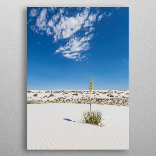 Like a sea of sand, White Sands National Monument rises from Tularosa Basin in the middle of New Mexico's desert. Lovely desert impression. metal poster