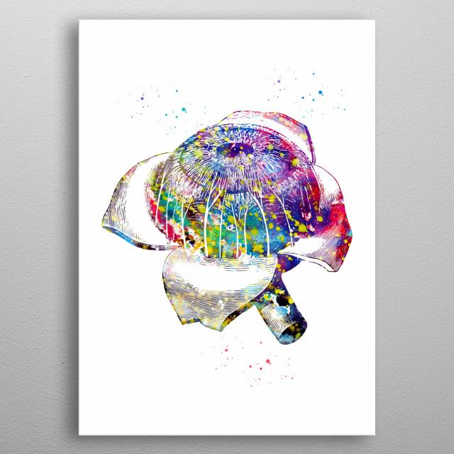 Eye, watercolor, medical art, wall decor, science poster metal poster