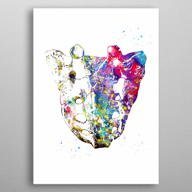 Sacrum, anatomy, watercolor, medical art, science poster, wall decor metal poster