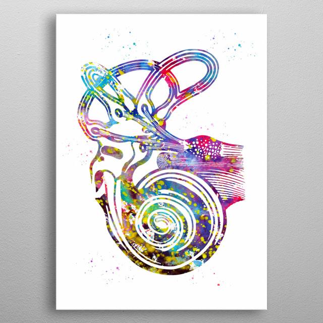 Ear anatomy, ear canal, cochlea histology, cochlea, vestibular, acoustic, nerves, audiology, Medical Office Decor metal poster