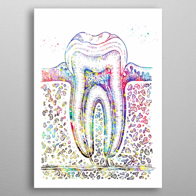 Tooth diagram, watercolor medical art, science, wall decor metal poster