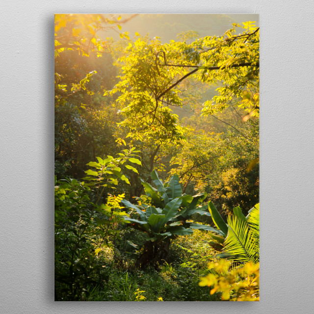 Gods Window South Africa | Image by Chantelle Flores |   metal poster