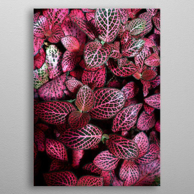 Urban Jungle with Pink leaves. metal poster
