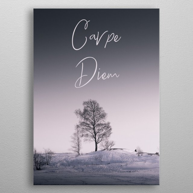 Carpe diem, seize the day, typography text art with simple landscape image by wordfandom - word fandom metal poster
