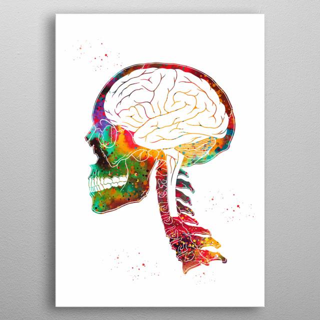 Skull and brain, skull print, brain print, watercolor skull, watercolor brain, anatomy art, Medical Office Decor, medical art metal poster