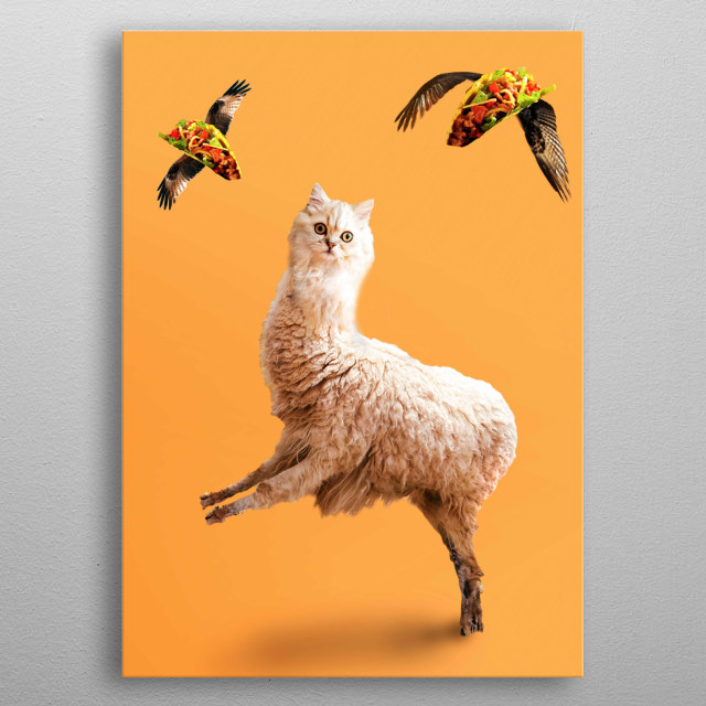 Pick up this weird funny cat llama with flying taco design. This makes a perfect gift so pick one up today.  metal poster