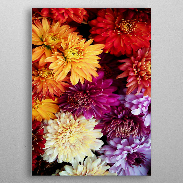 multi flowers bouquet  metal poster