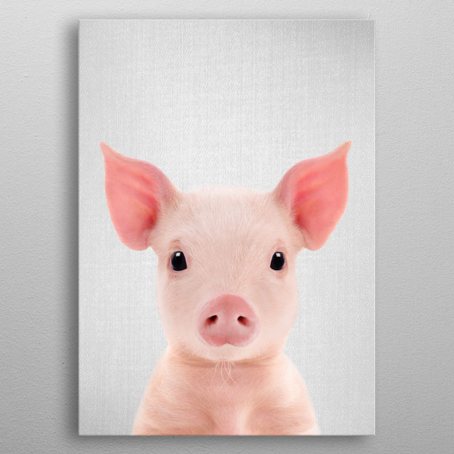 "Piglet - Colorful.  For more colorful animals check out the collection in the main page of my shop ""Gal Design"". metal poster"
