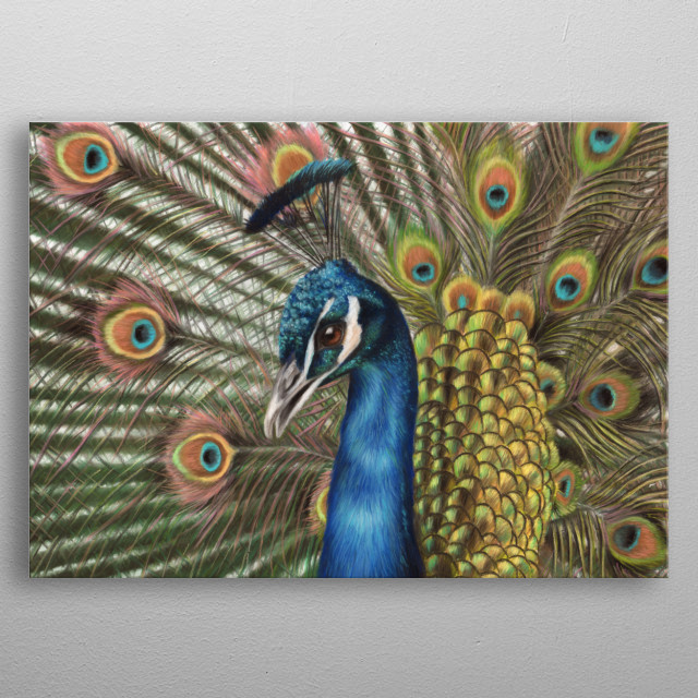 This image of a peacock is from an original pastel painting. This would make an ideal gift for any wildlife lover. metal poster