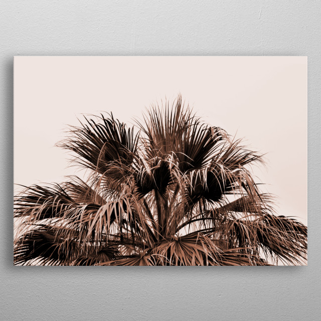 A capture of a beautiful palm treetop in earthy blush shades. metal poster