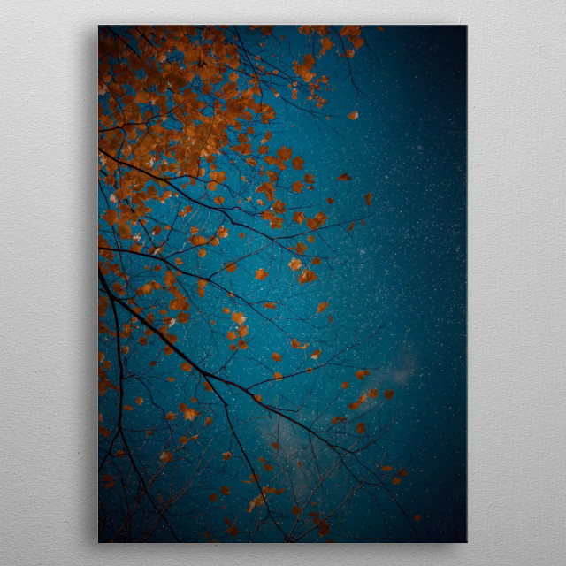 Our eyes do not allow us to see color in dim light, so my photomontage features orange maple leaves contrasting against a navy starry sky. metal poster