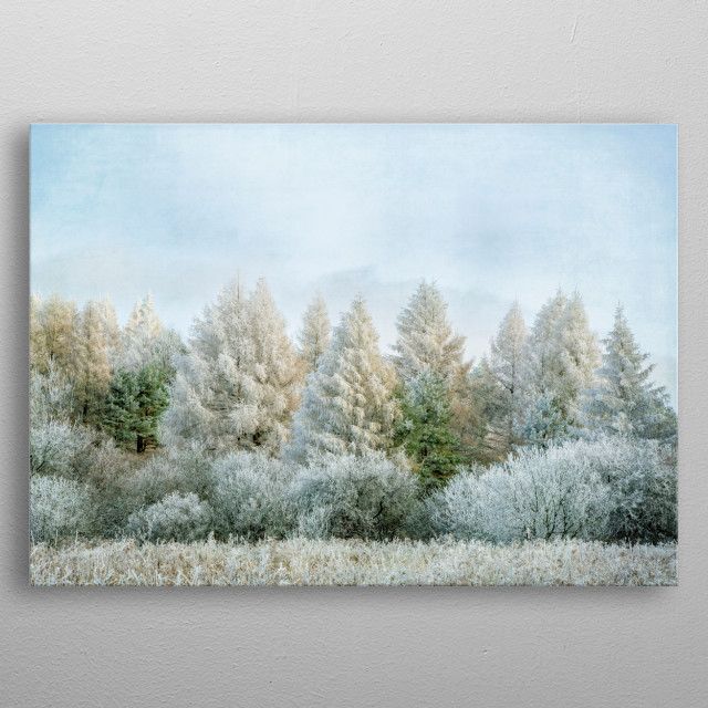 Photographed in Central New York State, rime ice had formed overnight and the result was gorgeous. Layered with vintage textures. metal poster