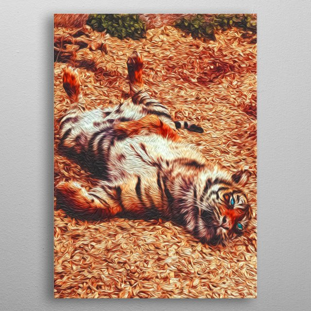Tigers are perhaps the biggest and most ferocious cats in the world. Some of the most beautiful, too. metal poster