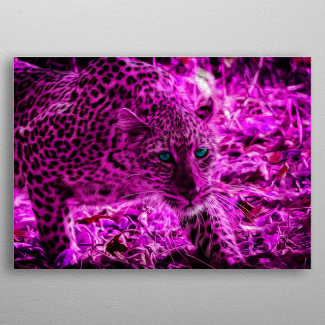 Leopards are some of the most fascinating, agile and athletic cats on the planet. metal poster