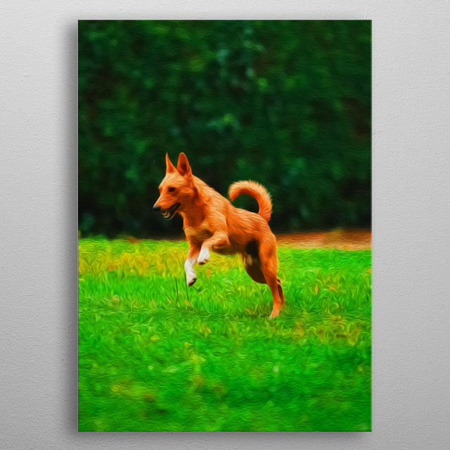 There's nothing in the world like the joy of a dog. metal poster