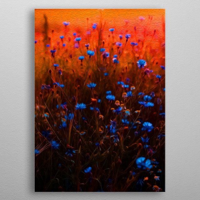 There's nothing like seeing blue flowers protruding tall grass. metal poster
