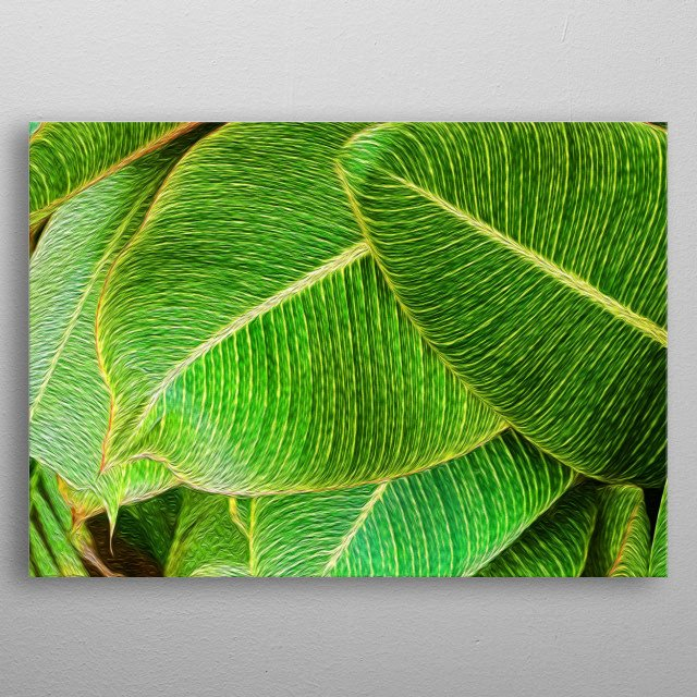 Large leaves just reveal something about nature. You know? metal poster