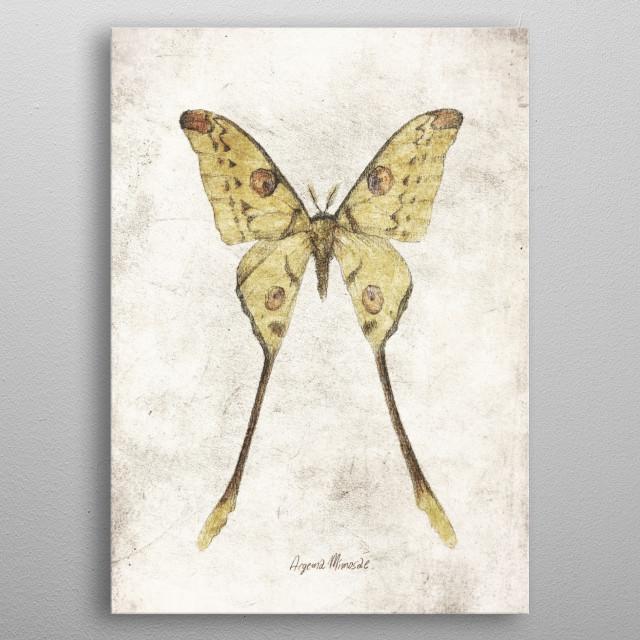 butterflies metal poster