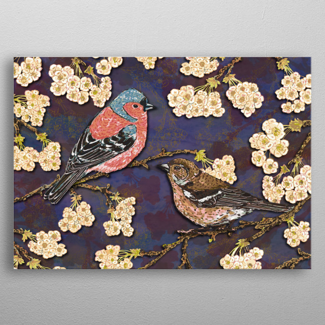 A pair of beautiful little chaffinches in a cherry blossom tree. Colourful little British birds. Digitised pen and ink. metal poster
