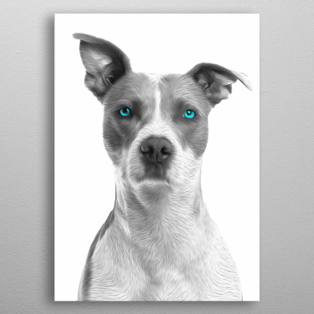 If you wanted to have a permanent reminder of how beautiful dogs are, here you go. metal poster