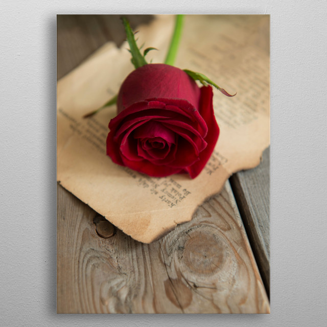 Still life with red rose on a wooden table metal poster
