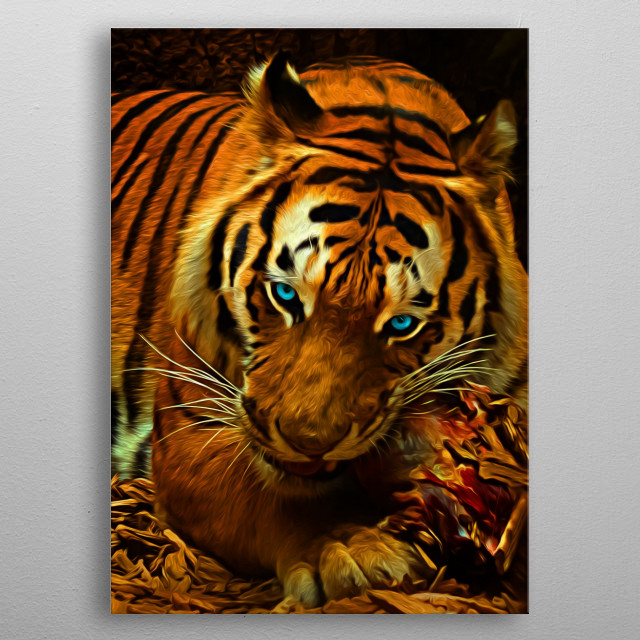 There's nothing in this world like the ferocious look in a hungry tiger's eyes. metal poster