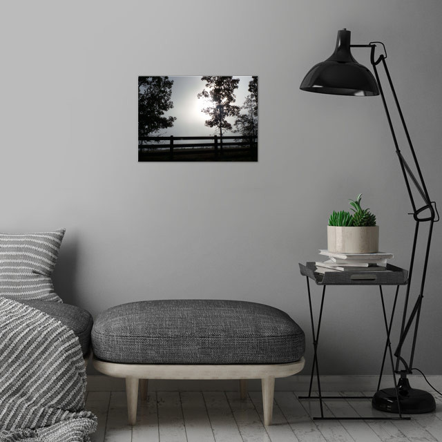 Morning Light wall art is showcased in interior