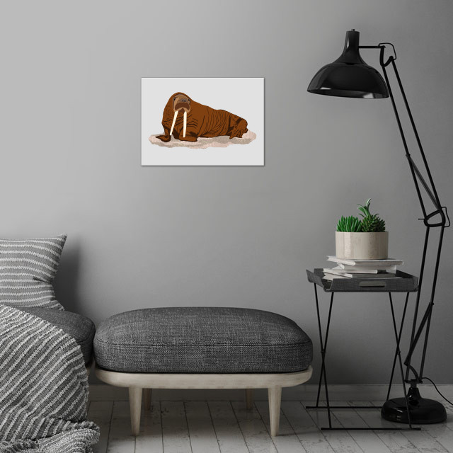 Pacific Walrus wall art is showcased in interior