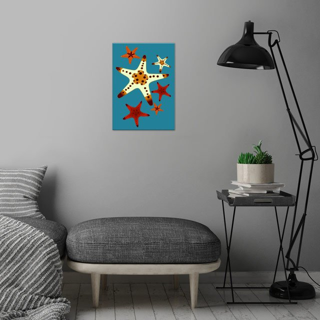Star Fish wall art is showcased in interior