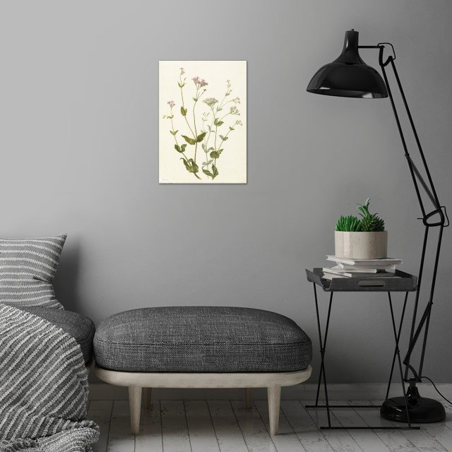 Vintage illustration of flowers  wall art is showcased in interior