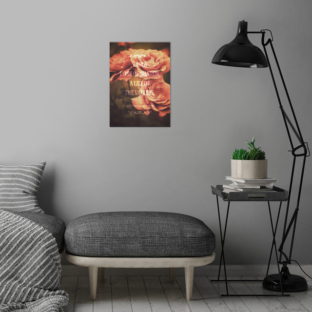 Song of Solomon 2:1 wall art is showcased in interior