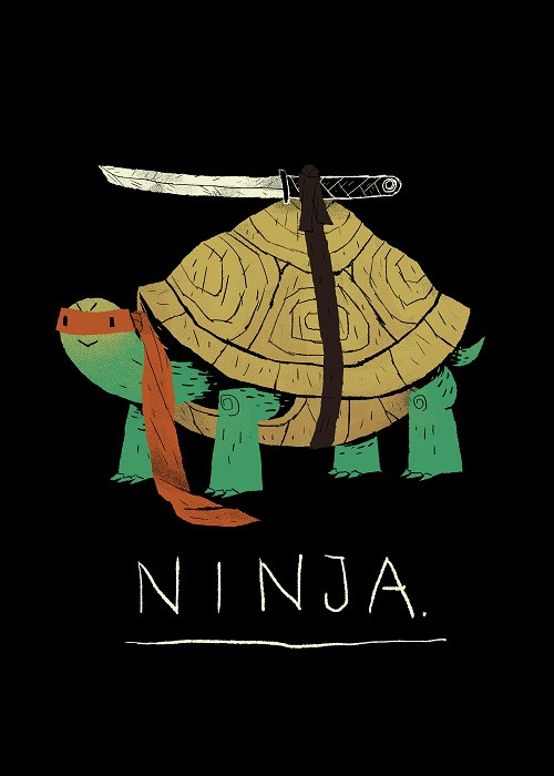 your own superhero ninja turtle