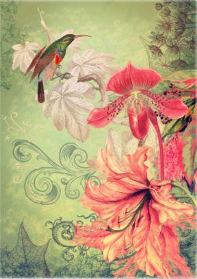 Song Garden Collage