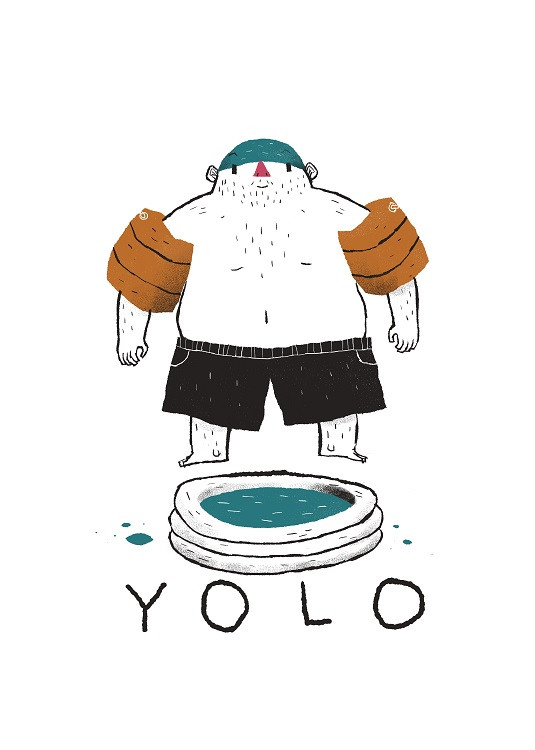 yolo illustration