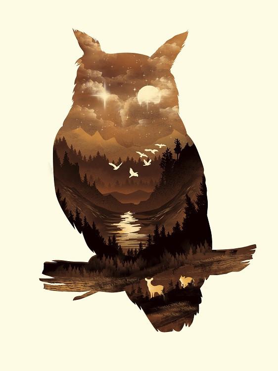 dan fajardo owl poster