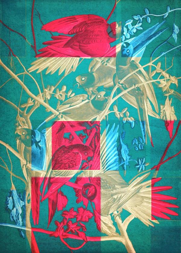 spring-pattern-art-floral-design-bird