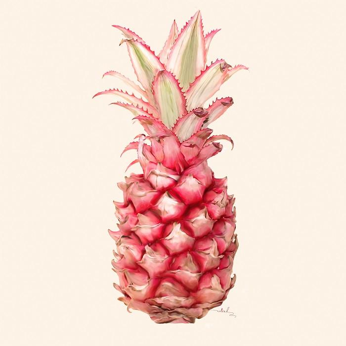 pink pineapple illustration