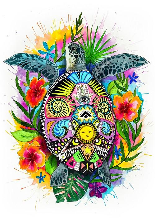 colorful turtle illustration