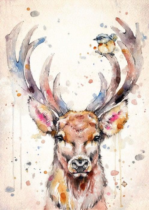 watercolor deer illustration