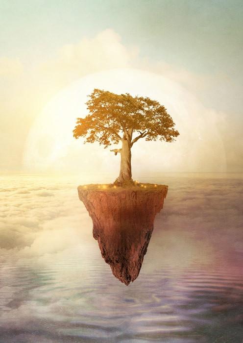 floating tree illustration