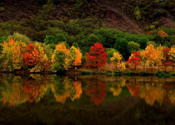 landscape-autumn-mirror-landscape-waterscape-tree-trees-forest-lake-mountain-red-yellow-green-orange