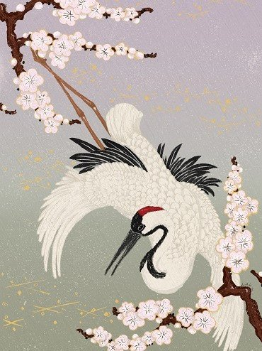 japanese illustration kirsche
